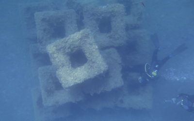 Artificial Reefs