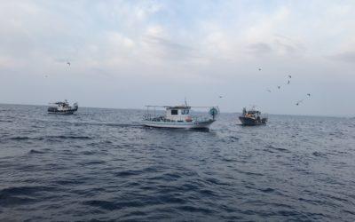 Το όραμα για την Κυπριακή θαλάσσια αλιεία μέσα από τη Γαλάζια Οικονομία