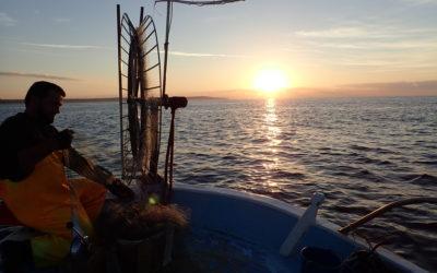 Προβλήματα στον τομέα της Κυπριακής αλιείας και εισηγήσεις για μια βιώσιμη ανάπτυξη